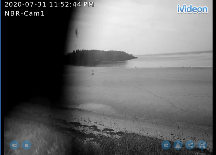 new river beach live cam