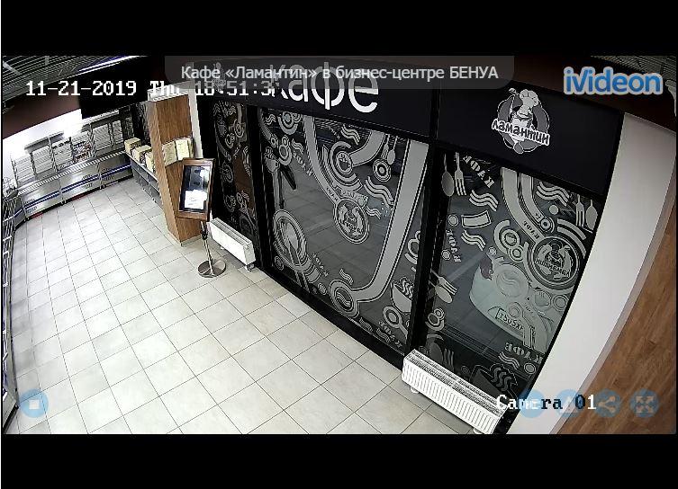 Cafe Manatee, Benoit Business Center Live Cam - St Petersburg, Russia 🇷🇺 11