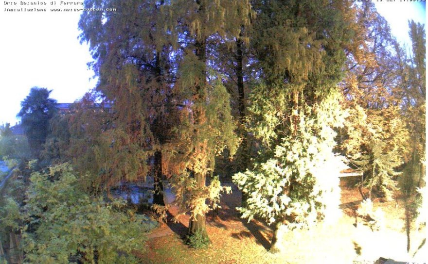 Live Cam Italy, Botanic Garden Ferrara  🇮🇹 18