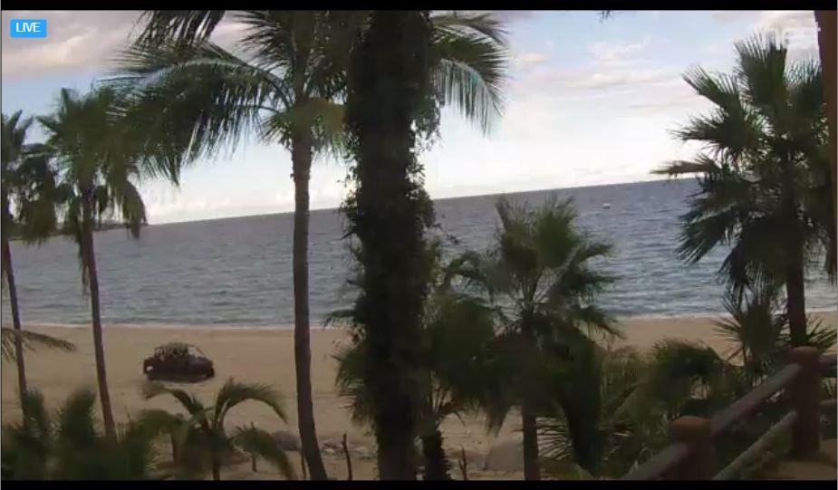 Live Cam Mexico, Jen Wren Sportfishing, Buena Vista 7