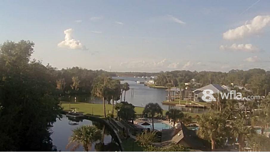 Live Cam USA, Crystal River, Florida 7