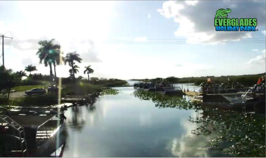 Live Cam USA, Everglades Holiday Park, Florida 16