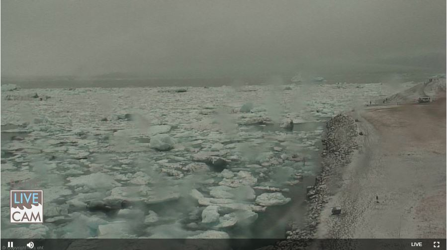 Live Cam Iceland, Jökulsárlón Glacier Lagoon 6