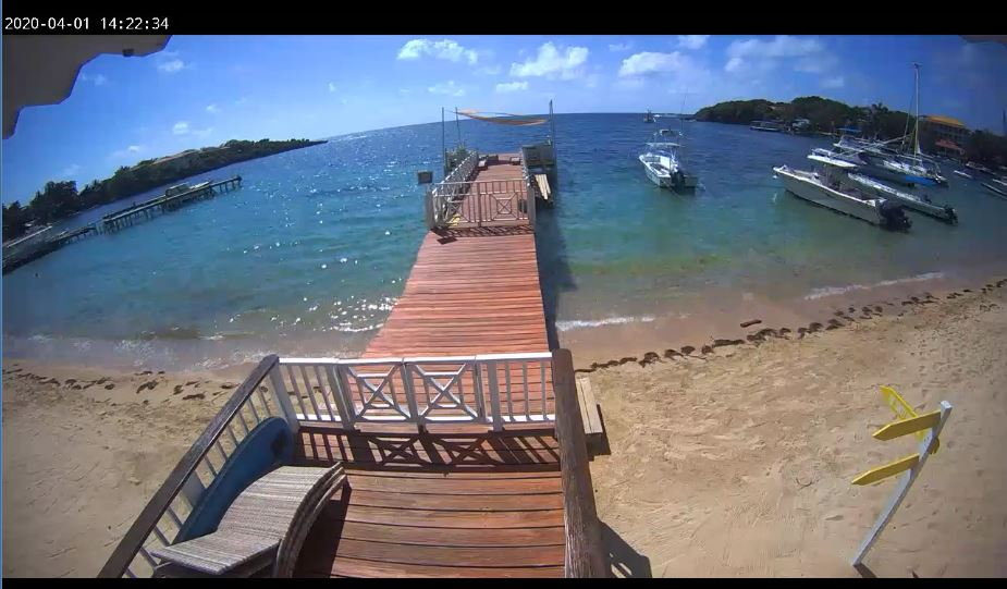 Live Cam Roatan Honduras