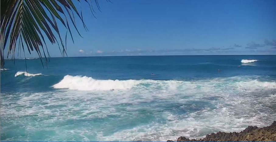 Live Cam Hawaii, Kuilima Cove Oahu 9