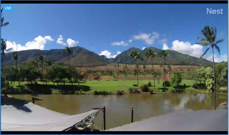 Live Cam Hawaii, Maui Tropical Plantation Webcam 7