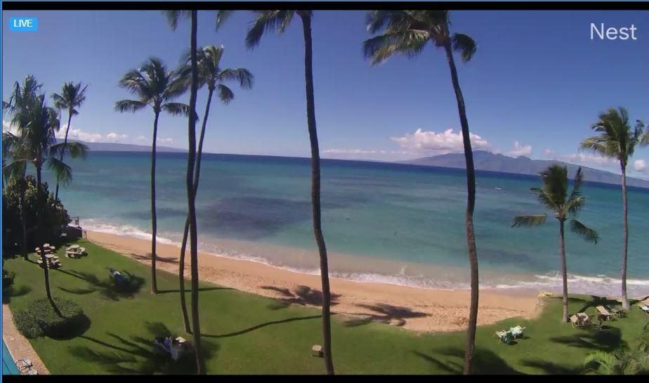 Live Cam Hawaii, Maui Sea Shell Condo Beach 13
