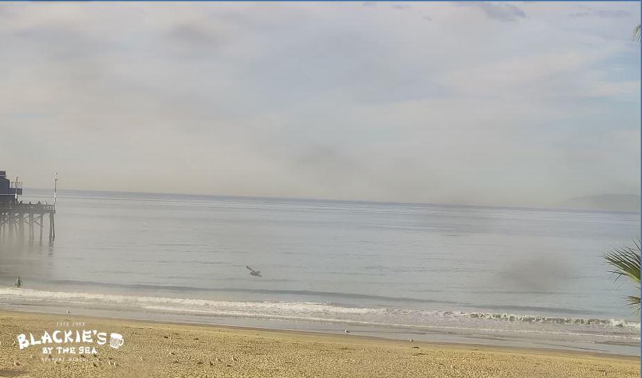 Live Cam USA, Newport Beach CA