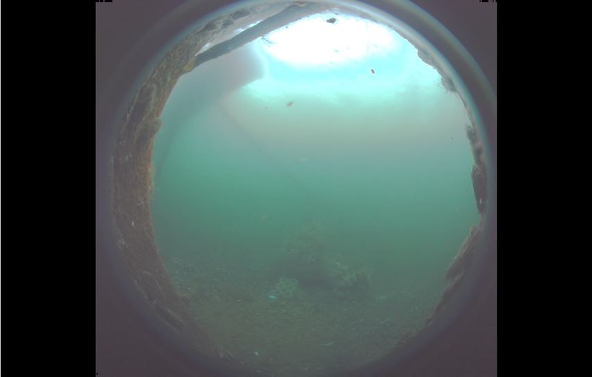 baltic sea live cam