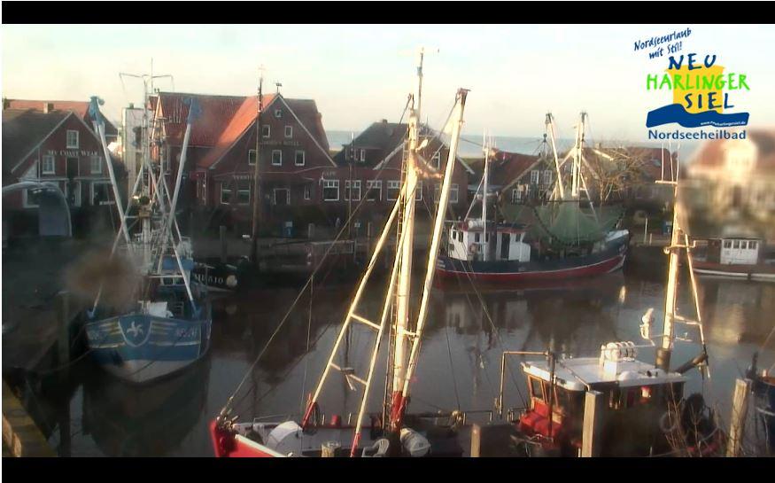 neuharlingersiel port live cam
