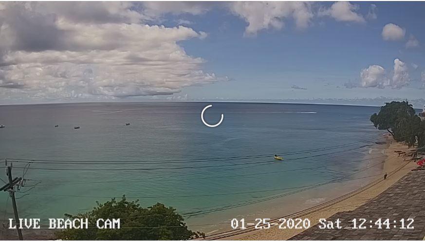 paynes bay beach live cam
