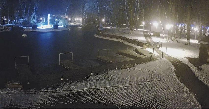 roman park romania live cam