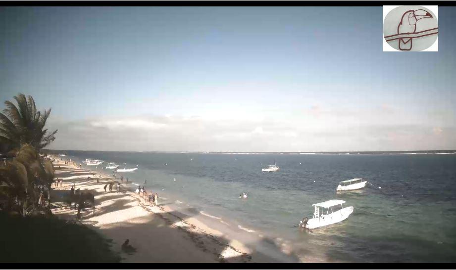puerto morelos beach live cam