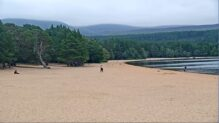 Loch Morlich Live Webcam HD, Cairngorm, Scotland