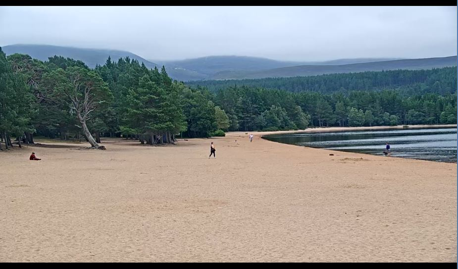 Loch Morlich Live Webcam HD