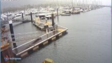 Lymington Boat Marina Live Webcam, England